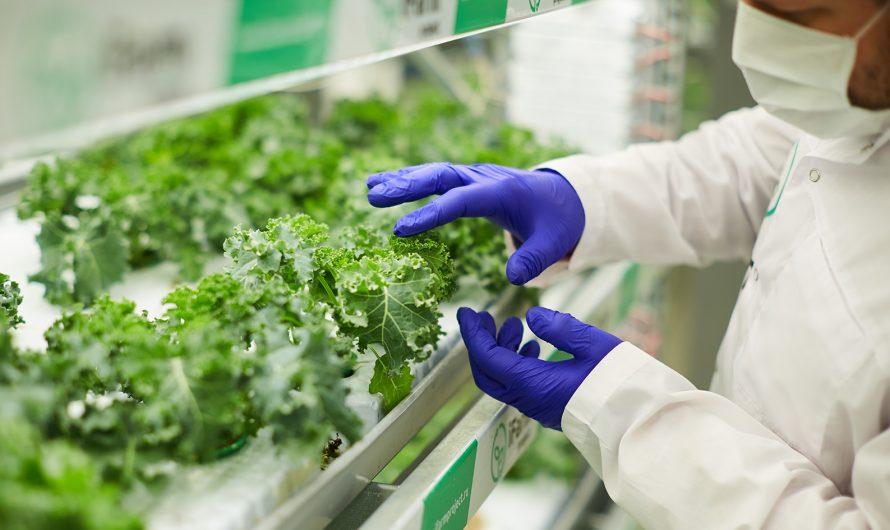 Взаимодействие научных школ аграрных вузов в инновационном развитии сельского хозяйства